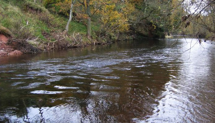 river eden at warcop