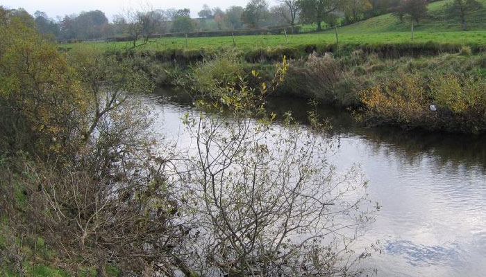 river eden at blandswath